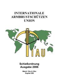 IAU - Regeln - Match