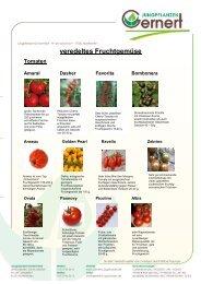 veredeltes Fruchtgemüse 2013 - Jungpflanzen - Gernert