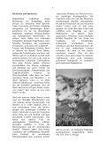 Heft 3 Oktober 2001 - LANIUS - Page 6