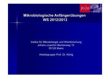 Vorbesprechung 1. Tag - Mikrobiologie und Weinforschung