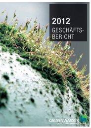 Geschäftsbericht 2012 - Gelsenwasser AG