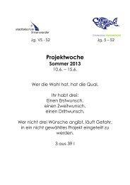 Projektskizzen 2013 - Gymnasium Finkenwerder
