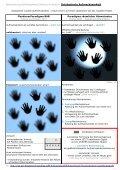 Aufmerksamkeit: Zustand der gesteigerten Wachheit ... - projekt 9 - Seite 7