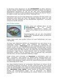 Diese Seite als PDF speichern. - Die Goldene Zeit-Schrift - Seite 3