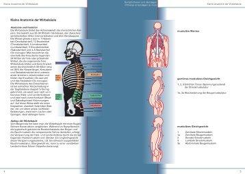 Rumpforthesen (PDF, 1.2 MB) - Orthotec