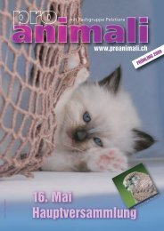 Frühling 2008 [pdf] - Pro Animali