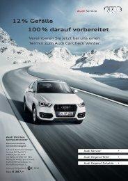 Audi Service - Prospekt (hier klicken) - Auto Grill