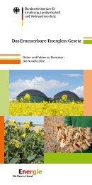 Die Novelle 2012 - Green Gas Grids