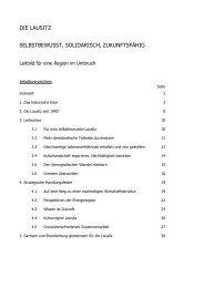 DIE LAUSITZ - DIE LINKE. Dr. Gerd-Rüdiger Hoffmann