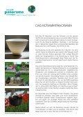 Pressemappe - panorama murten - Seite 3