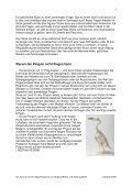 Lehrerinfo (pdf) - Theater Eiger Mönch & Jungfrau - Page 5