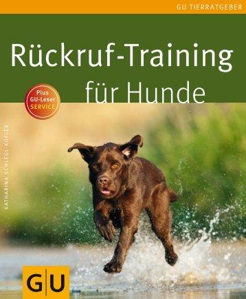 Rückruf-Training