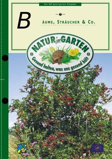 Bäume, Sträucher & Co - Natur im Garten