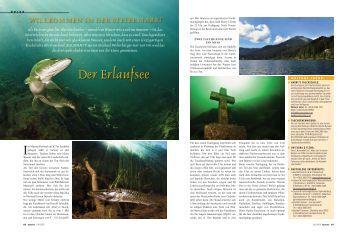 Neues vom Erlaufsee / Grüner See und Grübelsee in der Steiermark