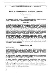 Revision der Gattung Prosphilus - Cerambycoidea.com