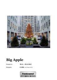 Frankenpost - New York November 2012 - Lesershop