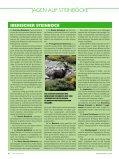 iberischer steinbock - HUNT TRIP SPAIN - Seite 7