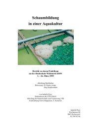 Schaumbildung in einer Aquakultur