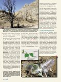 Kontrollierter Vielfraß – - Max-Wissen - Seite 2