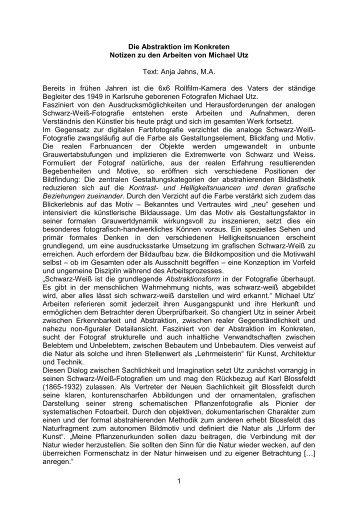 Anja Jahns über Michael Utz: Die Abstraktion im Konkreten (.pdf)