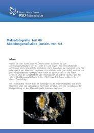 PSD Tutorial Makrofotografie