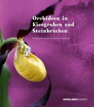 Orchideen in Kiesgruben und Steinbrüchen - The quarry life award