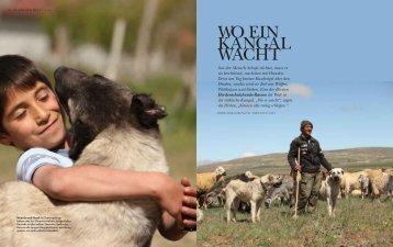 WO EIN KANGAL WACHT - philip-alsen.de