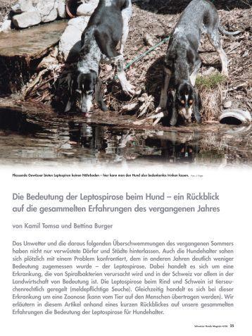 Leptospirose - Schweizer Hunde Magazin