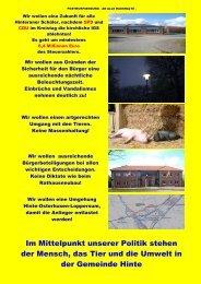 Flyer Wahl 2011 - Freie Liste Hinte