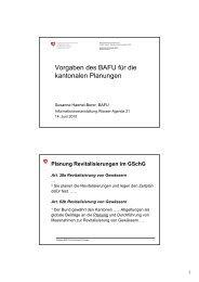 Vorgaben des BAFU für die kantonalen Planungen - Wasser ...