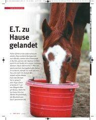 E.T. zu Hause gelandet - Focus-on-Horses