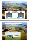 Etablierung regenerativer Energien auf Pellworm - Seite 3