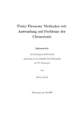 Finite Elemente Methoden mit Anwendung auf Probleme der ...