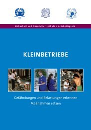 Guidelines Small Enterprises.pdf