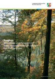 Heft 19 - Wald und Holz NRW