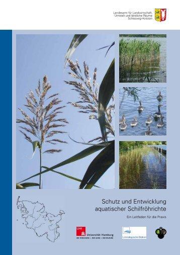 Schutz und Entwicklung aquatischer Schilfröhrichte - Landesamt für ...