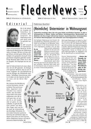 Fledernews 5 / 2005 - Fledermaus BE