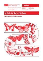 Vielfalt der Schmetterlinge - Naturhistorisches Museum Bern