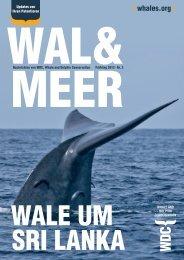 { whales.org } - WDCS Deutschland