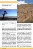 Aloe dichotoma - Köcherbaum - IG-Aloaceae - Seite 4