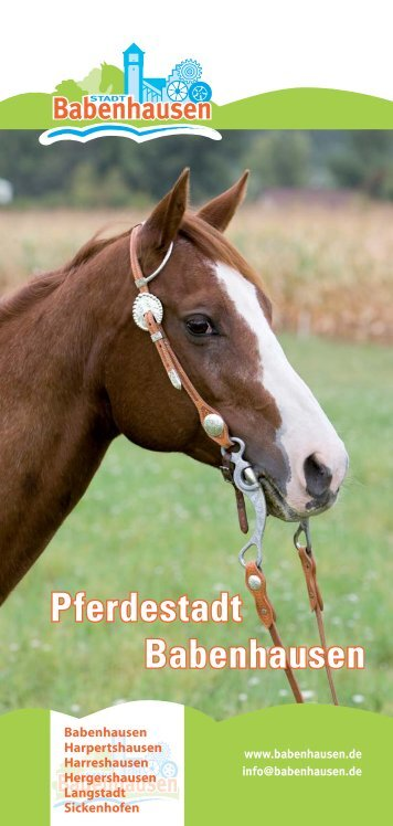 Pferdestadt Babenhausen - LilaVital