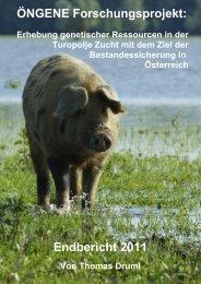 ÖNGENE Forschungsprojekt: Endbericht 2011 - WikiPigs