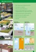 Privatkunden Prospekt - Dachbegrünung Ratgeber - Seite 3