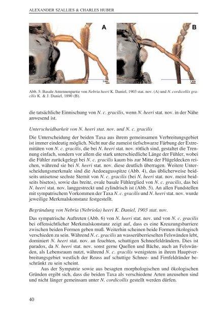 Szallis & Huber.qxd (Page 35) - Naturhistorisches Museum Bern