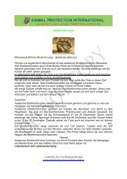Created by Zoo Vet Ramazan Boztepe www.animal-protection ...