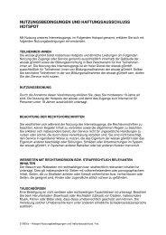 Nutzungsbedingungen als PDF