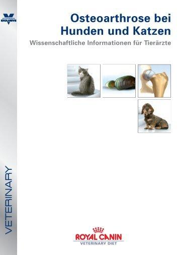 Osteoarthrose bei Hunden und Katzen - VET-MAGAZIN.at