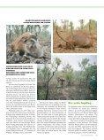 Andreas Rockstroh geht in Kamerun erfolgreich auf ... - Jagen Weltweit - Seite 4
