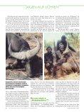 Andreas Rockstroh geht in Kamerun erfolgreich auf ... - Jagen Weltweit - Seite 5