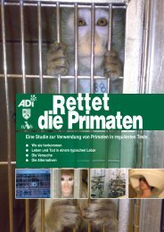 Eine Studie zur Verwendung von Primaten in ... - Save the primates